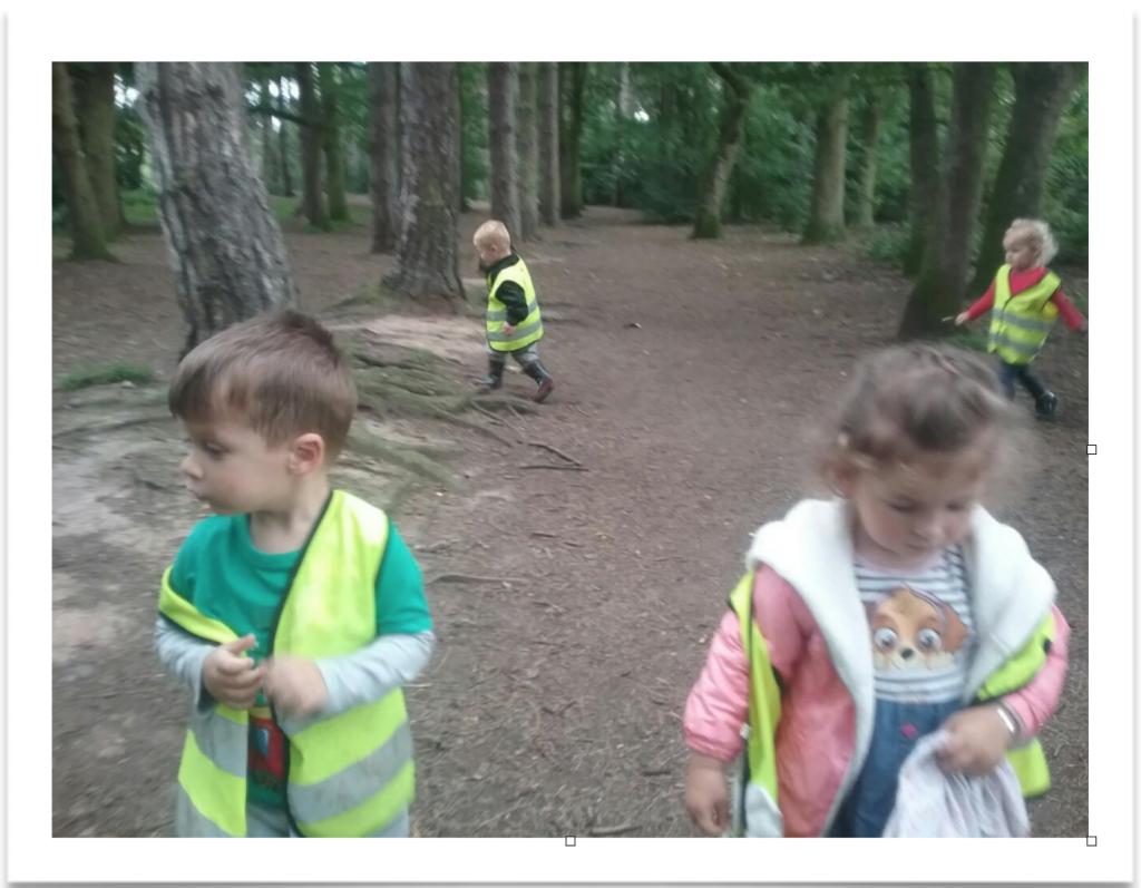 dinosaur hunt day leicester - children collection bones