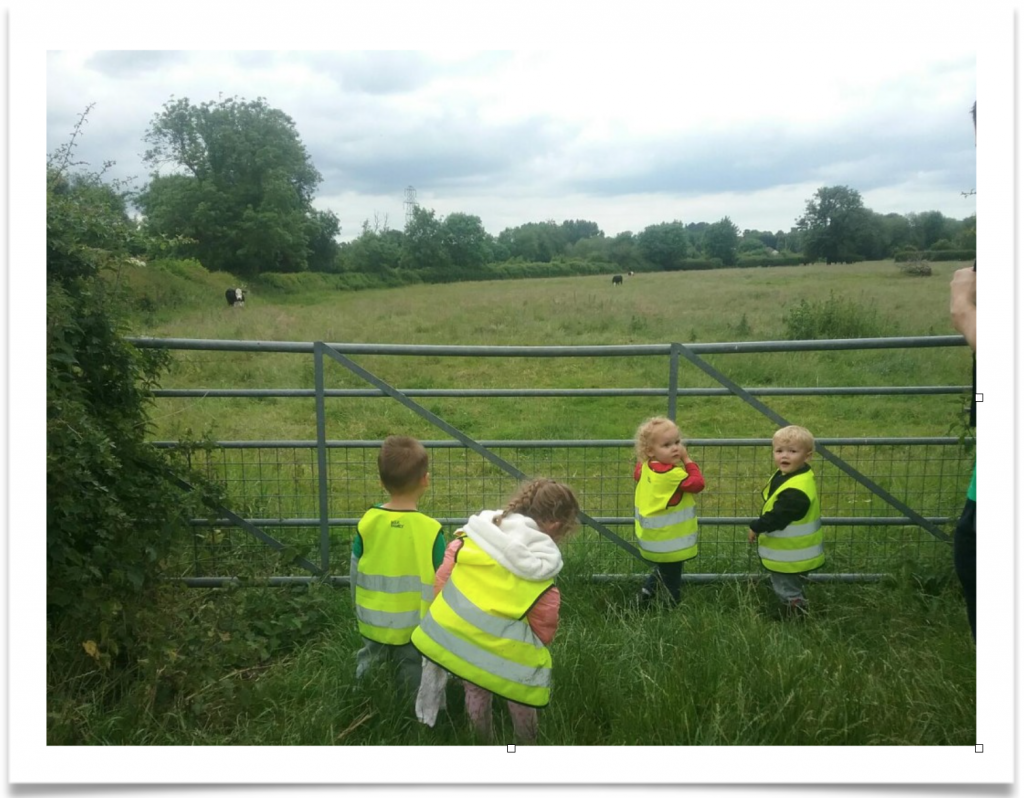dinosaur hunt day leicester - kids looking for dinasaurs